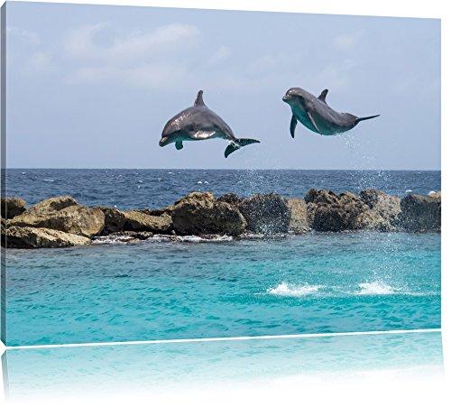 springende Delphine Bild auf Leinwand, XXL riesige Bilder fertig gerahmt mit Keilrahmen, Kunstdruck auf Wandbild mit Rahmen, guenstiger als Gemaelde oder Bild, kein Poster oder Plakat, Format:100x70 cm