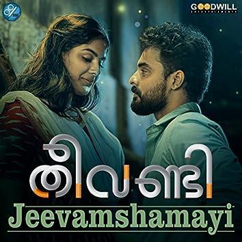 "Jeevamshamayi (From ""Theevandi"")"