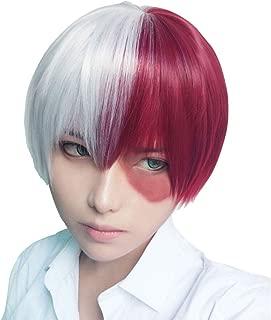 Qaccf Short Straight Half Silver White and Half Half Dark Red Cosplay wig (Silver White and Red)