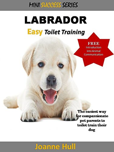 Mini success series: LABRADOR - Easy Toilet Training: The easiest way for compassionate pet parents to train their dog (English Edition)