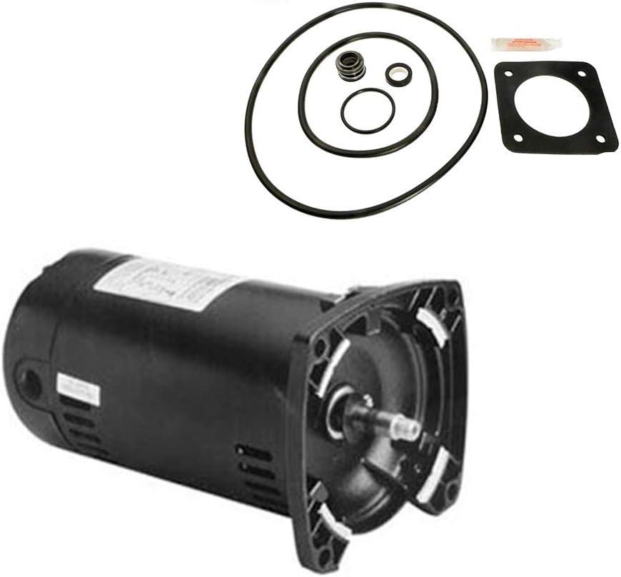 売れ筋ランキング 格安SALEスタート Puri Tech Replacement Motor Kit .75HP Sta-Rite PE for Max-E-Glas