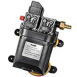 bayite 12V DC Fresh Water Pump 7.5 L/Min 2 GPM 100 PSI Adjustable