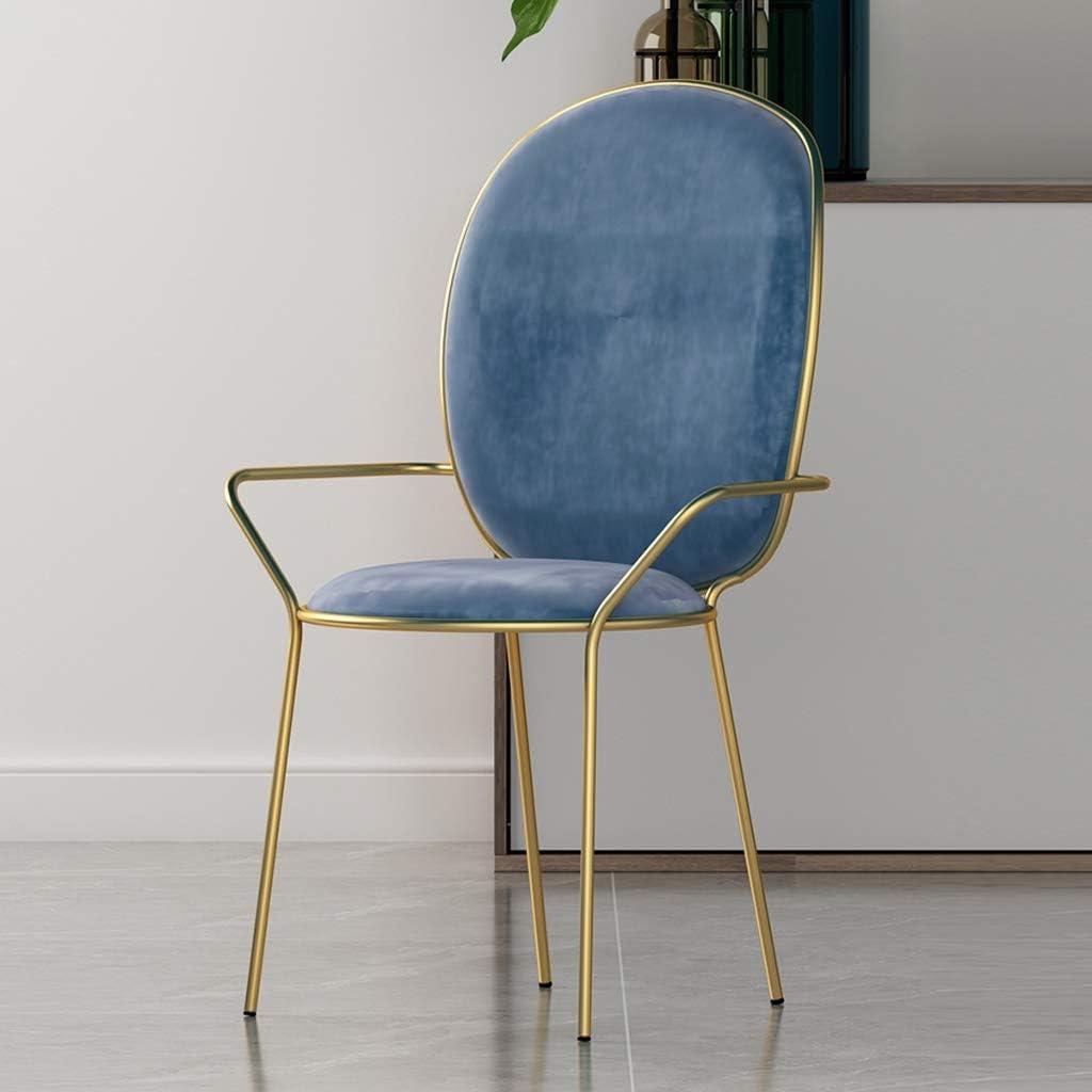 LF Chaise de Salle, Chaise de Bureau Simple, créative Dossier, Chaise Loisirs, Maison Adulte Chaise de Salle Simple (Color : Gray) Blue