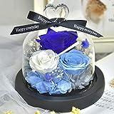 SeniorMar-UK Hecho a Mano para Siempre Rosas de Cristal Reales LED Botella de Flores de luz cálida Flores para el día de la Madre Flores Rosas románticas para Novia Azul Lago Azul Blanco