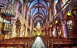 N/C Manualidades Pintura por números Kit Notre Dame Catedral Número Pintura Acrílico Pigmento Arte Decoración para el hogar Imagen de Pared 16 x 20 Pulgadas