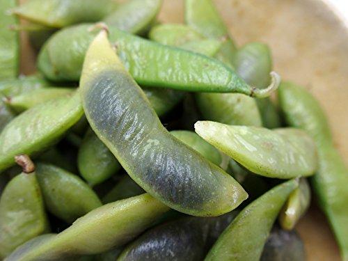 黒豆枝豆 1kg(500g×2) 【冷凍】 (2kg(500g×4))