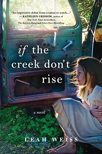If the Creek Don t Rise A Novel product image