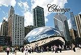 Chicago Bean, Cloud Gate, City, Skyline, Millennium Park, Illinois, Souvenir Magnet 2 x 3 Fridge Magnet