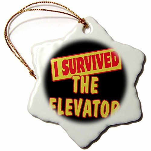 pansy 3-Inch Porcelain Snowflake Decorative Hanging Ornament, I Survived The Elevator Survival Pride And Humor Design