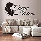 zhuziji Glow In The Dark 3D Wall Stickers,French Reference Carpe Diem Wall Home Nordic Bedroom, Campus, Kindergarten with Vinyl Pvc35x75cm