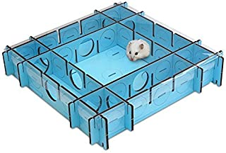 Which Dwarf Hamster Is The Best