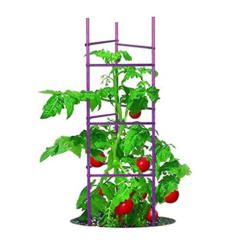Growsun 5ft Tall 6-Pack Purple Tomato Cage Plant Supports Garden Stakes for...
