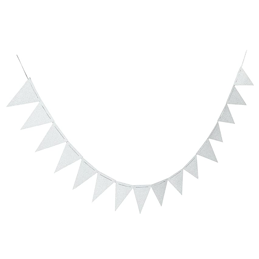 20 Feet Silver Glitter Pennant Banner, Paper Triangle Flags Bunting for Baby Birthday Party, Wedding Decor, Baby Shower, 30pcs Flags, Pack of 1(One 20 Feet or Two 10 Feet)