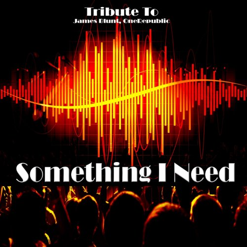 Something I Need: Tribute to James Blunt, Onerepublic [Explicit]