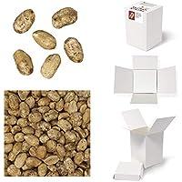 Bulk Gourmet Emporium - Caja a granel de cacahuetes con sal y pimienta negra, producto vegetariano, halal y sin envase de plástico, 350 g