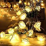 BigFox LEDイルミネーションライト バラ模様 電池式 3m30個 電球 デコレーション 電飾 クリスマス飾り 結婚式 パーティー 告白 (ウォームホワイト)