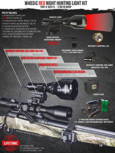 Best Light for Coyote Hunting at Night - (Top 4)