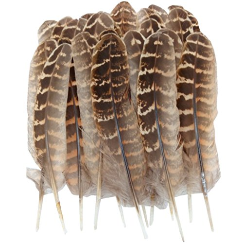 ERGEOB® Natur Dekoration Hahnfeder fasan Feder 50 stück, 10-15cm läng, Ideal für Kostüme, Hüte, basteln, Zuhause Dekor, DIY usw.