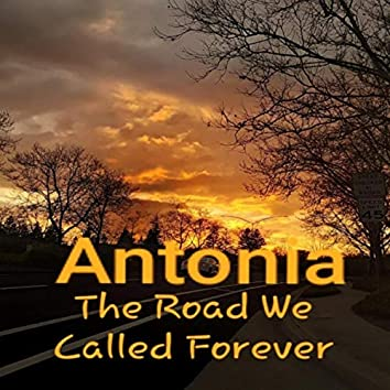 The Road We Called Forever