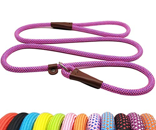 BTINESFUL 5FT Durable Slip Lead Rope Dog Leash, No Pull Nylon Training Leash for Medium Large Dogs, 1/2