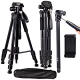 Regetek Camera Tripod Travel Monopod(65' Aluminum Professional Video Camera Mount Leg) Adjustable Stand with Flexible Head for Canon Nikon DV DSLR Camcorder Gopro cam& Carry Bag