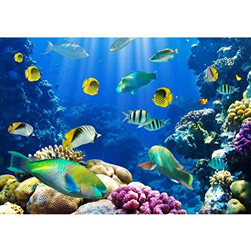 Vlies Fototapete PREMIUM PLUS Wand Foto Tapete Wand Bild Vliestapete - UNDERWATER WORLD - Aquarium Unterwasser Korallen Meer Fische Riff Korallenrif - no. 033, Größe:350x245cm Vlies