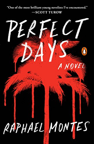 Perfect Days: A Novel (English Edition)