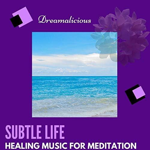 Liquid Ambiance, Ambient 11, Serenity Calls, Siddhi Mantra, Cleanse & Heal, Healed Terra, Spiritual Sound Clubb, Zen Waver, Zen Town, Binural Healers & Yogsutra Relaxation Co