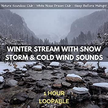 Winter Stream with Snow Storm & Cold Wind Sounds: 1 Hour (Loopable)