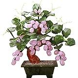 KAUTO Feng Shui Tree Jade para Escritorio, Vid, Bonsai, Cristales curativos, árbol de Dinero, Chakra, protección de Equilibrio, Mesa de hogar y jardín, Gran Regalo, púrpura
