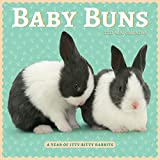Baby Buns Mini Wall Calendar 2022: A Year of Itty-Bitty Rabbits
