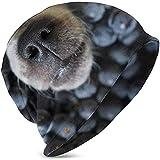 Maselia Hundenase, die Schwarze Traubentiere herausstößt Wildtierfutter und DrinkKnit Hats