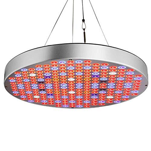 Exmate 50W Plant Grow Lights con 248 LEDs IR UV Full Spectrum Growing Bulbos de lámpara para plantas de interior Tienda