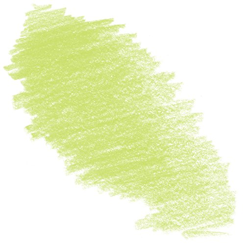 Caran D'ache Neocolor II Crayons Individual No. 730 - Chinese Green (7500.73)