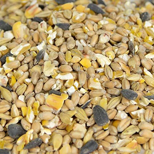 Geflügelkörnermix 100% Bio, Gen-Frei