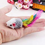 <span class='highlight'><span class='highlight'>Ruluti</span></span> 1 Pc Cat toys False Mouse Interactive Mini Funny Animal Playing Toys For Cats Kitten@02