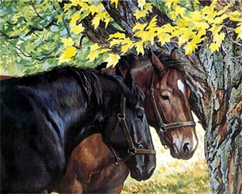 Draw horses by numbers, gift home decoration, suitable for adults, children, beginners, with brushes, acrylic paint D-4 40x50cm