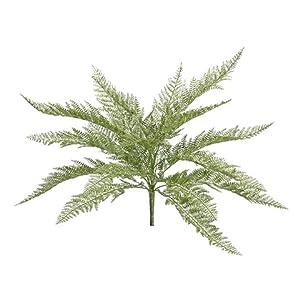 Arcadia Silk Plantation 19″ Glittered Lace Fern Bush Glittered Green (Pack of 12)