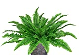 LSKYTOP 4 Pack Artificial Ferns Plants Artificial Shrubs Boston Fern Bush Plant Silk Ferns Leaves UV Protected for Home Kitchen Garden Wall Decor Indoor Outdoor Use