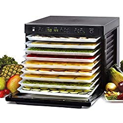 The 7 Best Tribest Food Dehydrators