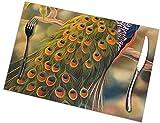 Set di 6 tovagliette con stampa di pavone, facili da pulire, resistenti, antiscivolo, resistenti al calore, 45,7 x 30,5 cm