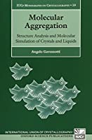 Molecular Aggregation: Structure Analysis and Molecular Simulation of Crystals and Liquids (Iucr Monographs on Crystallography)