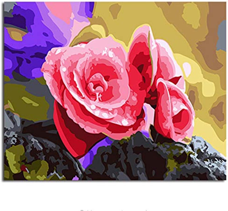 Yangll Malen Nach Zahlen Gerahmtes Bild Malerei & Kalligraphie Der Blaume DIY Färbung Von Zahlen Für Inneneinrichtungen, Framed40X50cm B07HNVFMM9 | Berühmter Laden