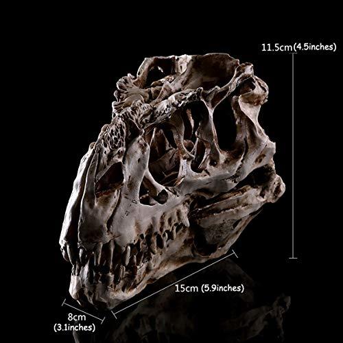 LUYIYI Tyrannosaurus Schädel Skulptur, 4.5inches Tierisches Skelett Modell Halloween-Dekor, Höhe