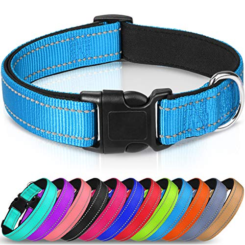 Joytale Reflective Dog Collar,Soft Neoprene Padded Breathable Nylon Pet Collar Adjustable for Large Dogs,Sky Blue,L