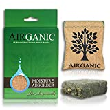 Airganic Safe Car Closet Dehumidifier - Powered by Natural Minerals and Plants - Dehumidifier for RV and Gun Safe, Shoe Moisture Absorbers, Kid and Pet Friendly (1 Pack)