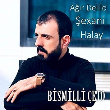 Ağır Delilo Şexani Halay