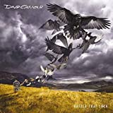 David Gilmour: Rattle That Lock (Blu-Spec CD2) (Paper Sleeve) (Audio CD)
