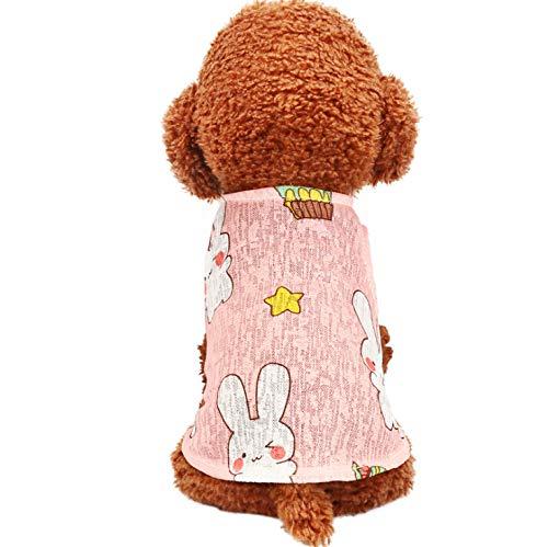 ZFFLYH Haustier-Sommer-Dünnschnitt-Kleidung, kleine Hundeblusen-Kaktus-Weste-Sonnenschutz-Kleidungs-Hundekleidung,D,M
