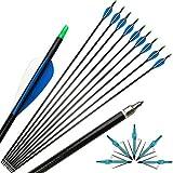 ZSHJG 12pcs Flechas de Fibra de Vidrio de Tiro con Arco de 30 Pulgadas Spine 500 Flechas de Caza con Carcaj de Flecha para Compuesto Recorvar Arco (Flecha + Punta de Flecha)
